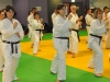 stage-1e-2e-et-3e-dan-louviers-le-17-nov-2012-040