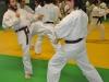 stage-1e-2e-et-3e-dan-louviers-le-17-nov-2012-069