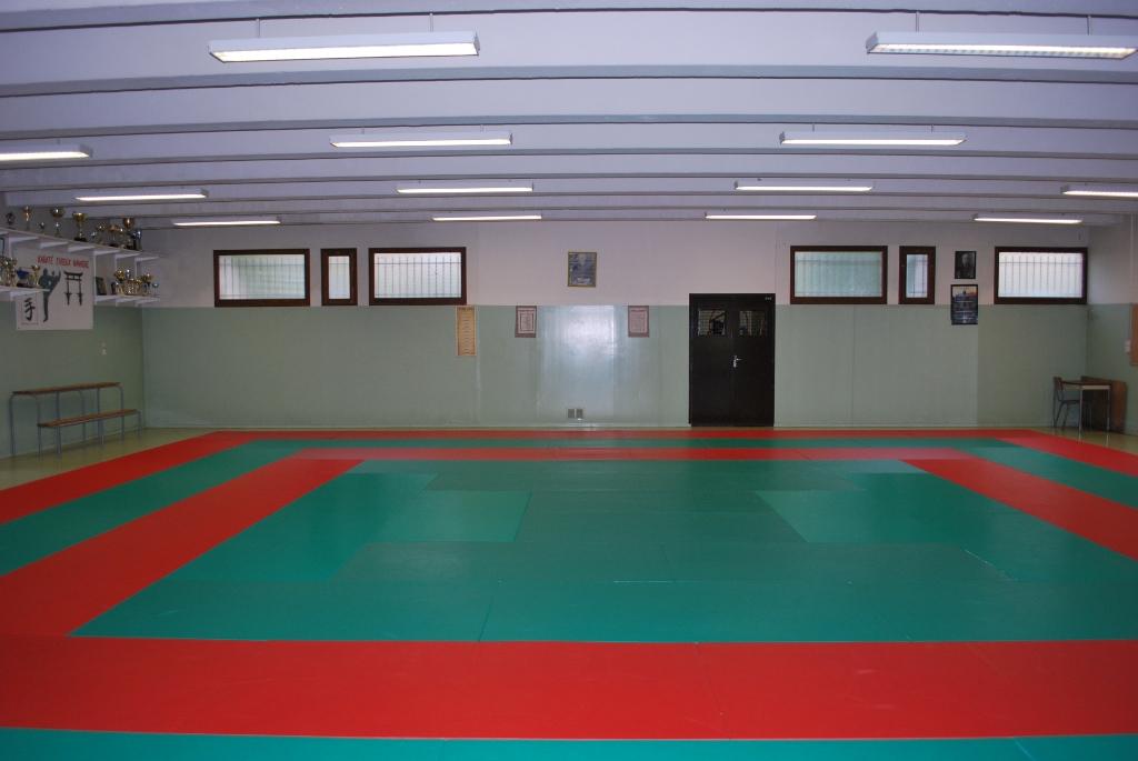 Karate dojo business plan
